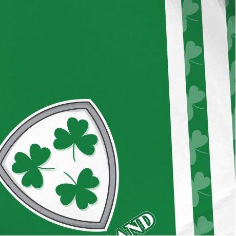 Airosportswear Supporters - Ireland Shorts