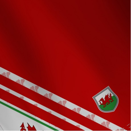 Airosportswear Supporters - Wales Polo