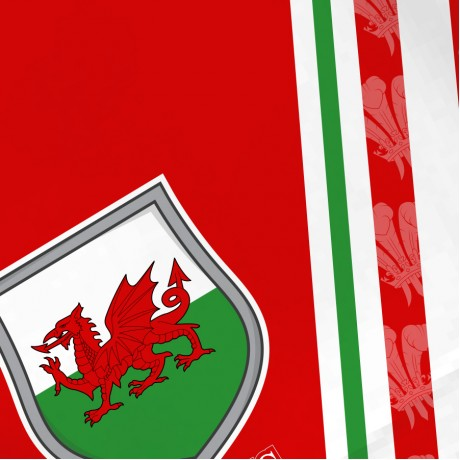 Airosportswear Supporters - Wales Shorts